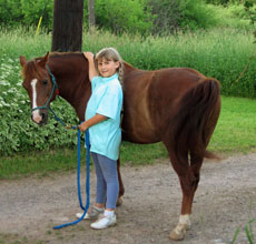 Bring your horse to Palmquist Farm