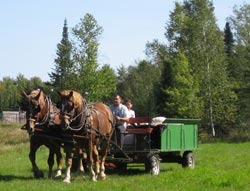 horse-drawn hayrides at Palmquist Farm